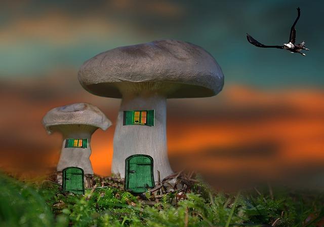 Alguns consells a l'hora d'escollir la teva nova llar